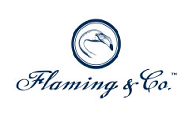 flaming logo